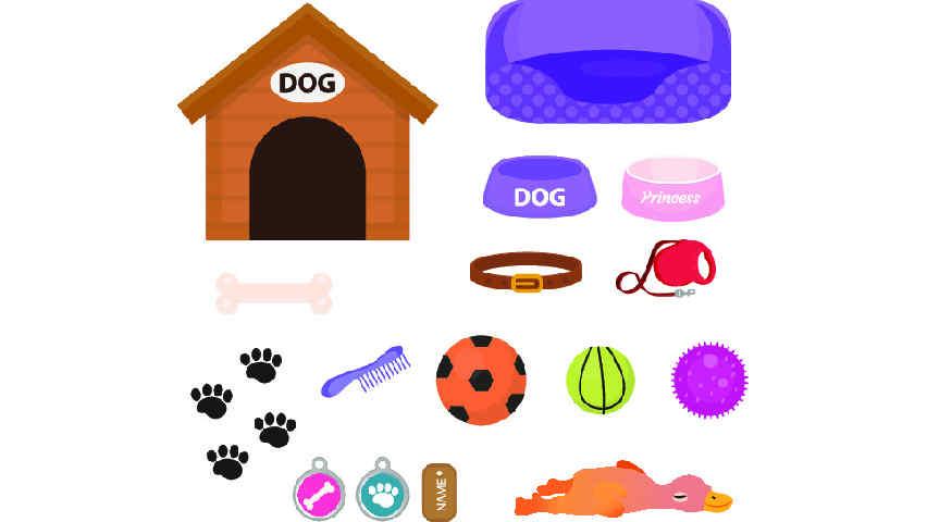 Jouets, accessoires et matériel pour chiot Husky