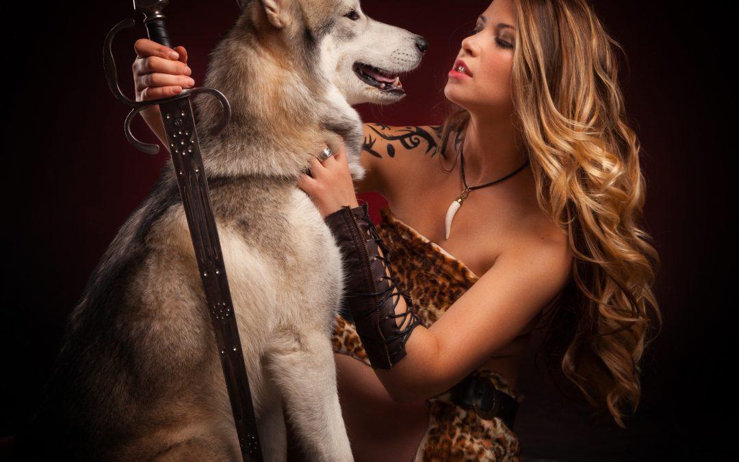 Husky Sibérien, qui es-tu?